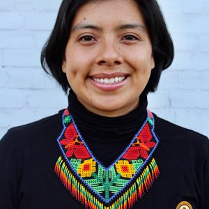Colorful Mexican Huichol Necklace